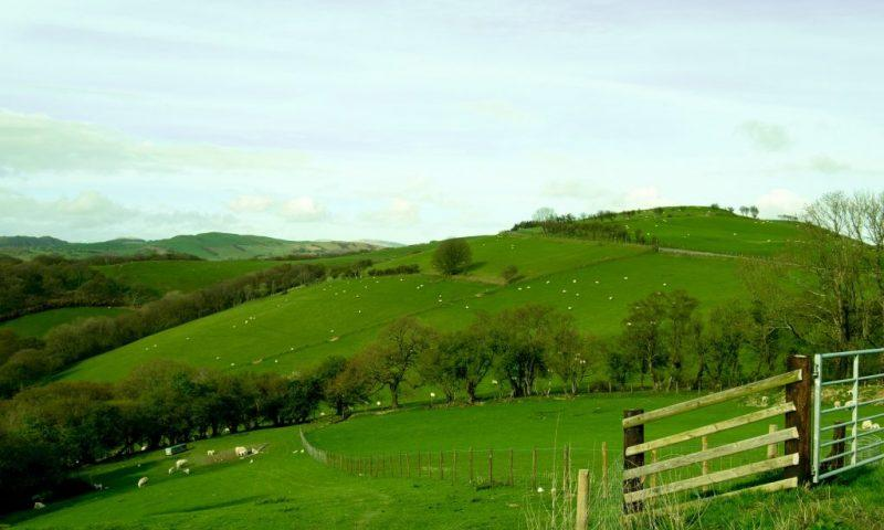 Lush green hills with white dots - sheep