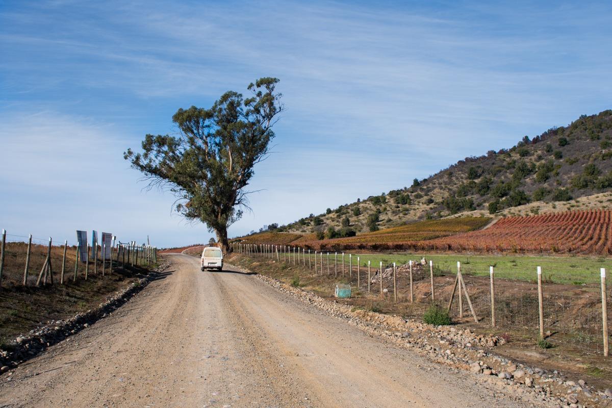 Vožnja s kombijem po slikoviti vinski dolini Colchagua