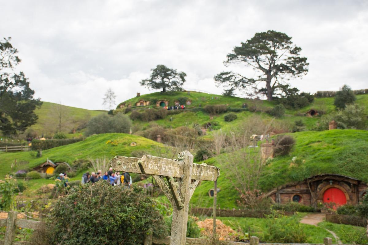 First view of Hobbiton - hill punctuated by hobit holes