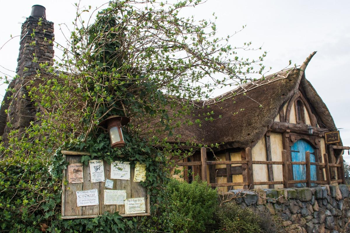 Green Dragon - Pub in Hobbiton