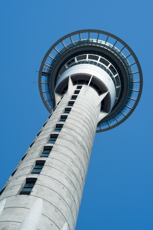 Sky Tower from frog's perspective