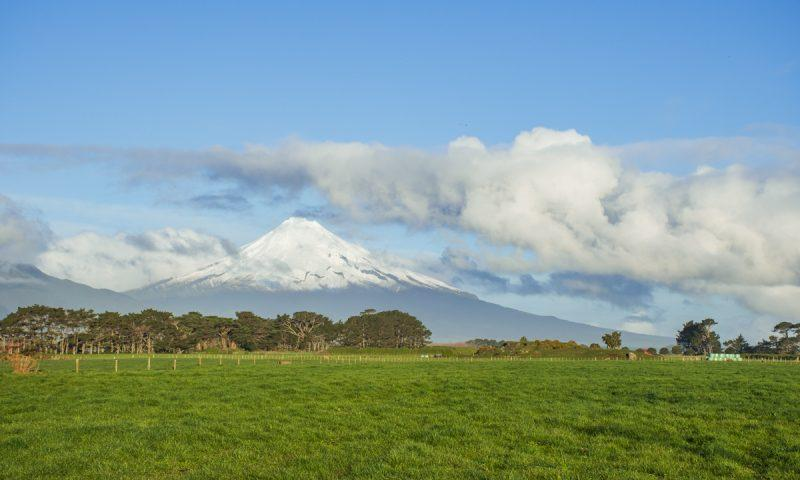 New Zealand North Island Road Trip cover photo