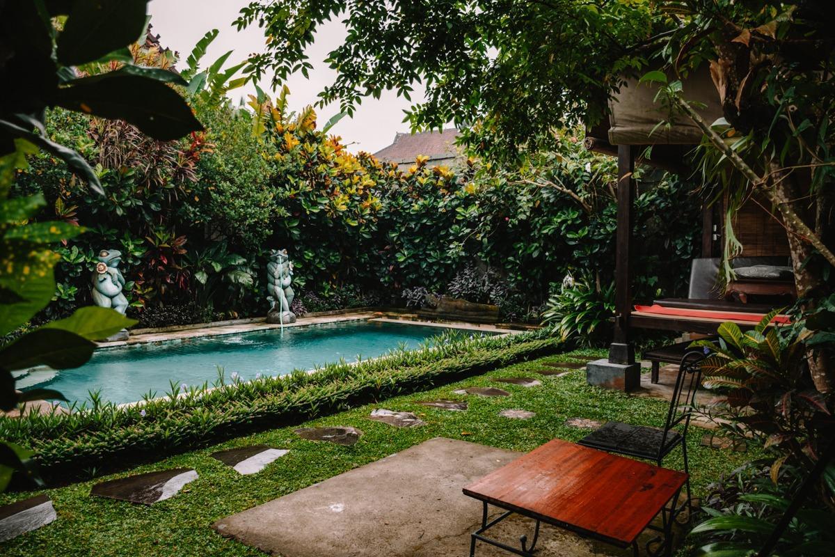Zeleno dvorišče z bazenom v vili v Ubudu (stroški potovanja za Bali)