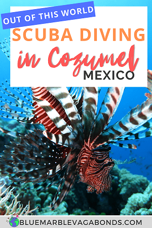 Pin for Scuba Diving in Cozumel, Mexico