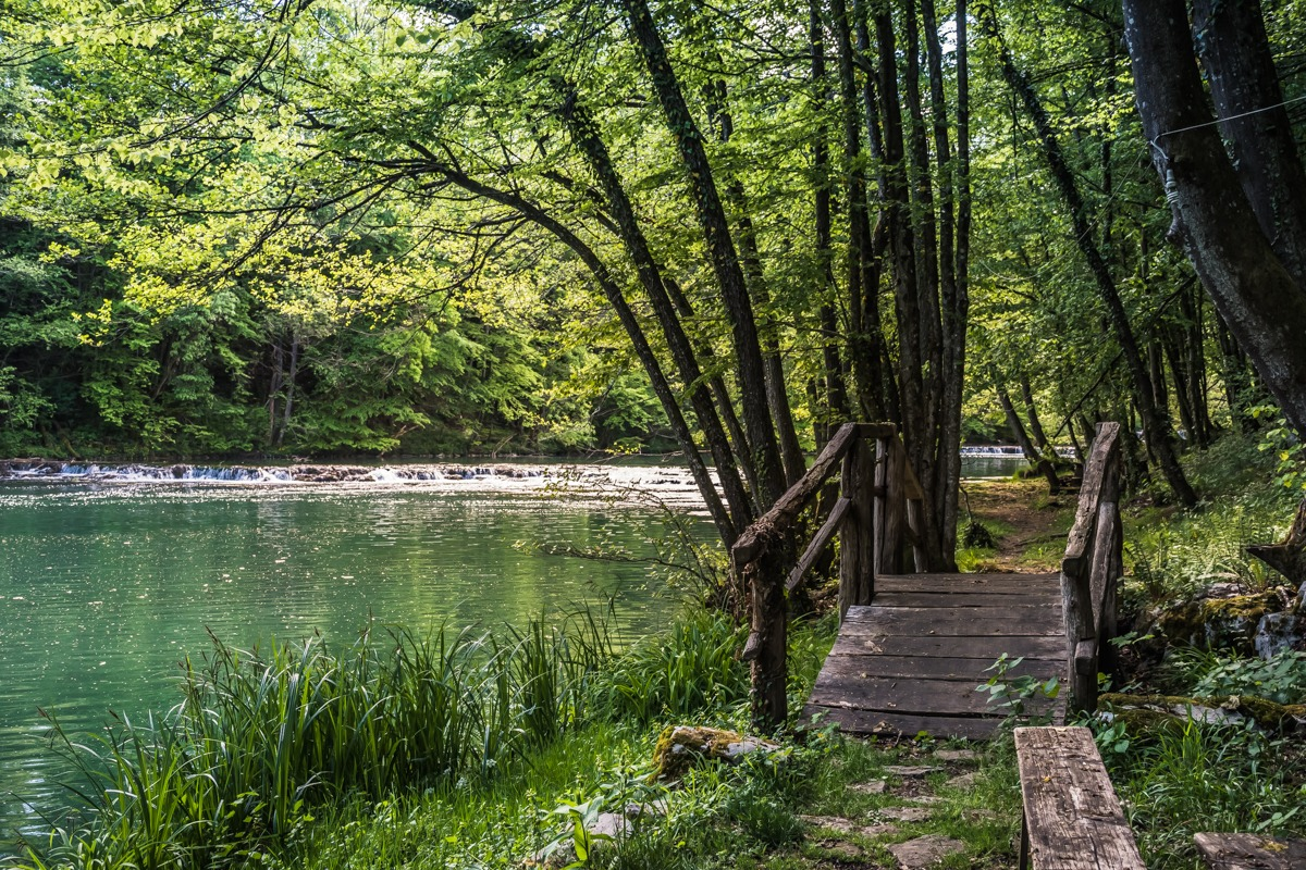 Park Loka with wooden bridge next to green Krka river, Dolenjska Slovenia
