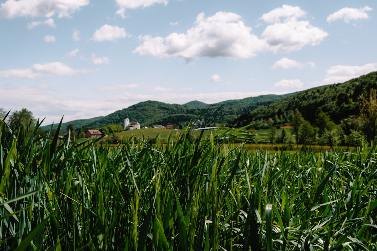 Krka village, Slovenia