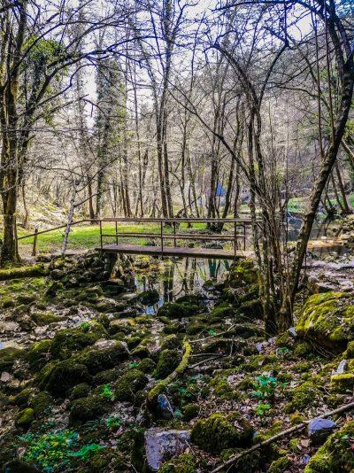 Izvir Temenice - ena izmed znamenitosti Dolenjske
