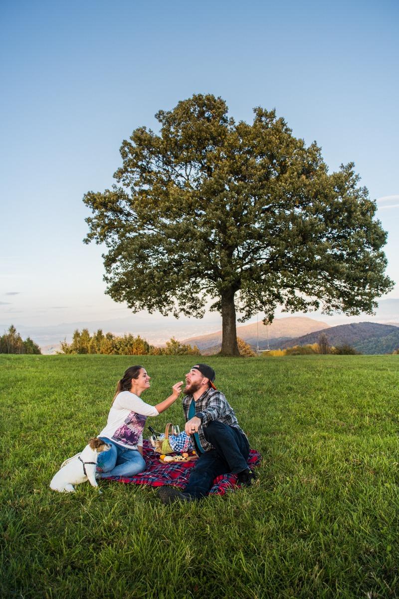 Piknik na Ravni gori